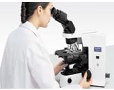 Olympus BX41 Clinical Microscope