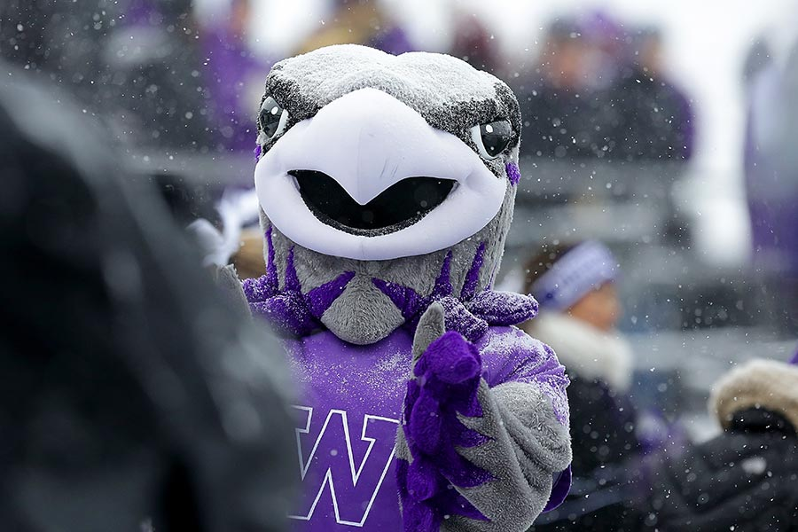 Willie Warhawk at a UW-Whitewater athletic event