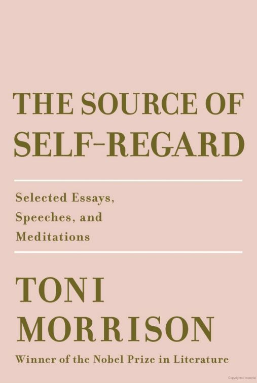Book cover image of The Source of Self-Regard